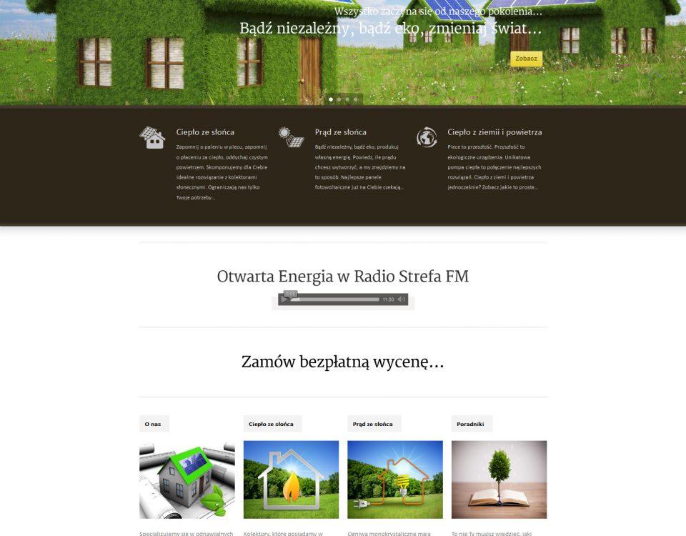 Projekt i realizacja strony internetowej